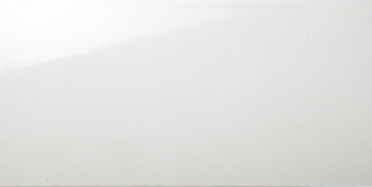 CONCEPT WHITE weiß glänzend 25 x 50 Image